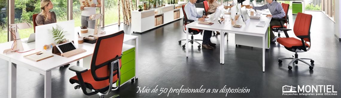 proyecto-muebles-montiel